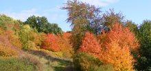 Zima zatím nepříchází, koncem října se oteplí a