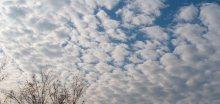 Na Ostravsku padaly teplotní rekordy