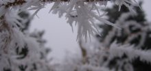 Mrazy a sníh sužují celou Evropu, oběť zimy i v