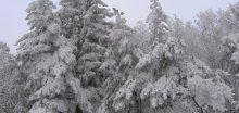 Na jižní Moravě hustě sněžilo; kraj vyzval řidiče,