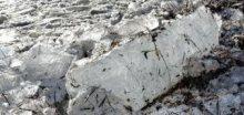 V Arktidě bylo dosaženo nejnižší minimum letošního ledu