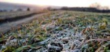 Zima 2013/2014 bude patřit mezi ty nejteplejší v historii