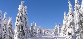 Na horách leží mnohdy desítky centimetrů sněhu