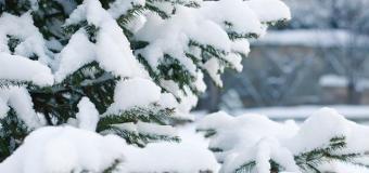 ČHMÚ vydal upozornění na vydatné sněžení, napadne až 20 cm
