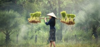 Počasí ve Vietnamu