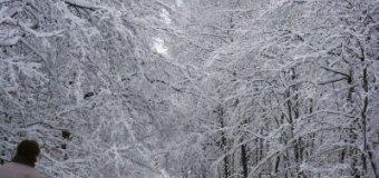 Přichází opět zima a bude i sněžit v nižších
