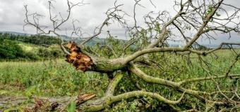Na Šumavě vítr burácel rychlostí až 151 km/hod