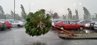 Zlínský kraj zasahly silné bouřky, které lámaly stromy
